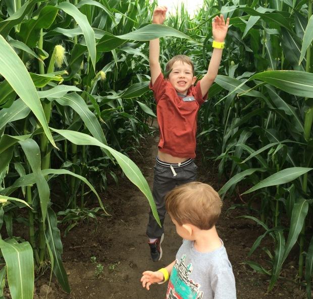 jump corn